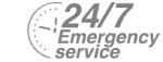 24/7 Emergency Service Pest Control in Cockfosters, East Barnet, EN4. Call Now! 020 8166 9746